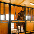 GL431 Horse in stall sound by ITT Products-0